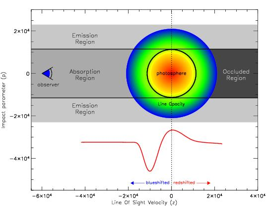 A P Cygni profile showing blueshifted absorbtion trough and doppler broadened emission towards the red. Image from Daniel Kasen, http://supernova.lbl.gov/~dnkasen/