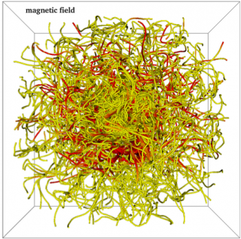 Tangled magnetic field lines in the authors' simulation of a collapsed gas cloud.