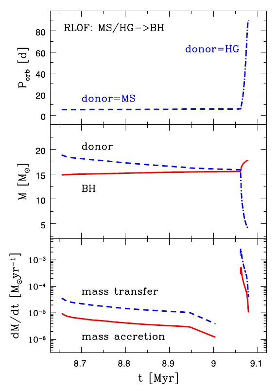 The evolution of the Cygnus X-1 binary system.  The top panel illustrates that the orbital period will shoot up in a few hundred thousand years, when the O star leaves the main sequence stage and enters the Hertzsprung Gap.  Simultaneously, it will start losing mass very quickly (middle panel) and the black hole will grow (bottom panel).  From Figure 2 of Belczynski et al. 2011.