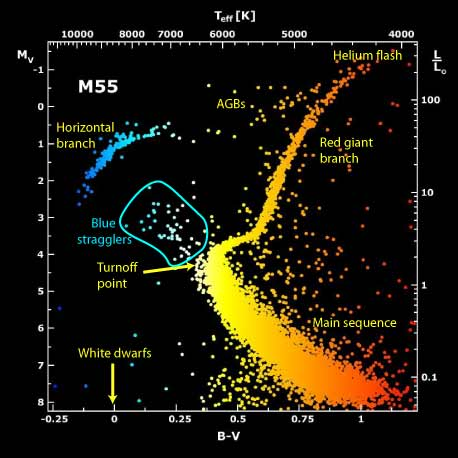 The Hertzprung-Russell (H-R) diagram of globular cluster M55, plotting luminosity (visual magnitude MV) versus temperature (color B-V).  This particular figure highlights the unusual position of blue stragglers just beyond the turnoff, which should have already evolved off the main sequence long ago.  What is the physical reason for these interlopers' unusually high brightness and temperatures?