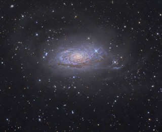 Growing Galaxies Inside-Out
