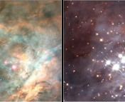 This picture shows the HII region in the Orion Nebula. The optical image on the left shows clouds of gas and dust; the infrared image on the left shows newly born stars.