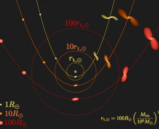 The feeding habits of supermassive black holes