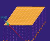Figure 2 from Drukier et al. 2012