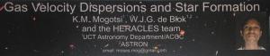 Header of Mogotsi et al. poster