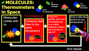 Using molecules as a thermometer