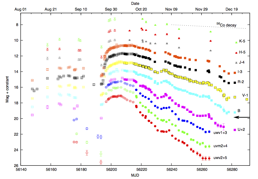 Lightcurves of SN2009ip in various bands. Round points are UV, square are optical, triangular are NIR. Open point are previously published data, while filled ones are from this paper. The decay slope of cobalt-56 (the product of nickel-56) in the V-band is plotted for comparison. The V-band lightcurve drops off much faster than radioactive decay would suggest. (Credit: Fraser et al. 2013).