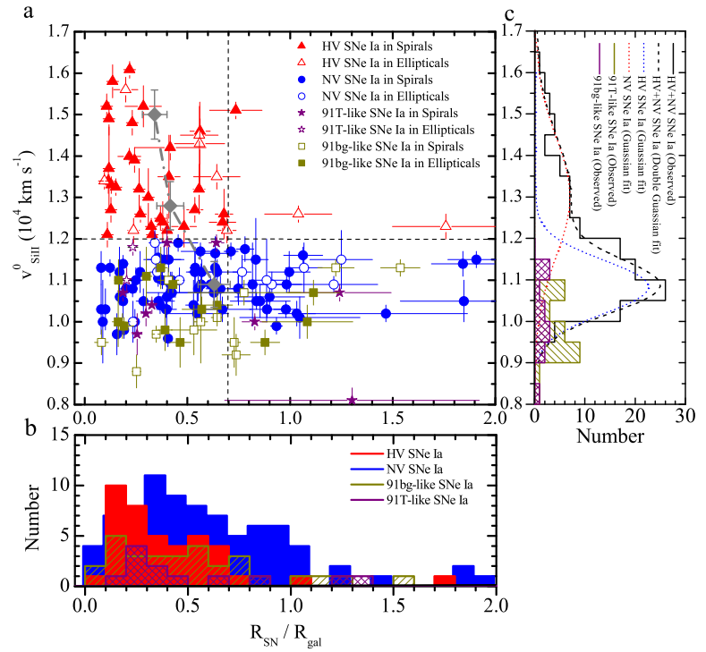 Radial distribution of the two populations of type Ia supernovae within their host galaxies. Normal velocity (NV) supernovae are found all over their host galaxies while high velocity (HV) supernovae are centrally concentrated and are rarely found beyond 0.7 times the galaxy radius.