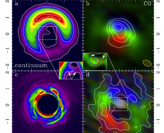 Gas and Dust in a Protoplanetary Disk: Turning 2D Data into 3D Models