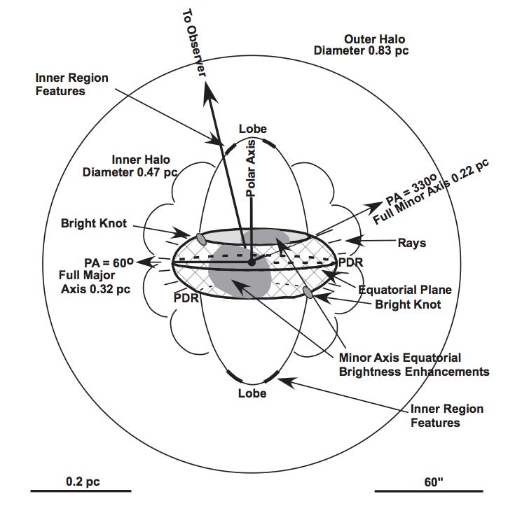 Figure 2. – The 3-D image of the Ring Nebula. Note that the observer is above (and a little to the left) of this image.  In a sense it is a bird's eye view.