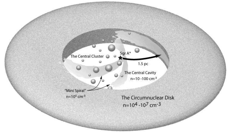 Schematic view of the central few parsecs of the galaxy (central molecular zone),  showing the central black hole, Sgr A*, stars in the central star cluster, and the circumnuclear disk which contains dense molecular clouds.
