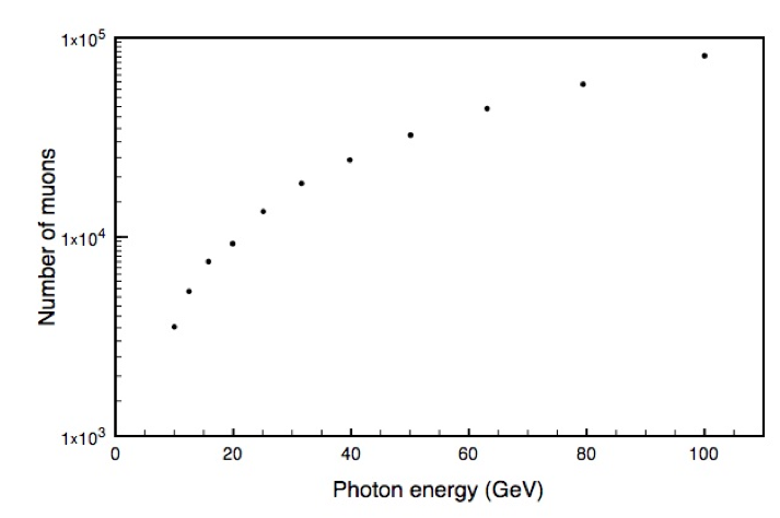 Total number of muons that reach Earth's surface as a function of incoming photon energy, assuming 10 million photons with energies in the range of 10-100 GeV hit the top of Earth's atmosphere.