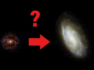 Nature versus nurture in the growth of galaxies