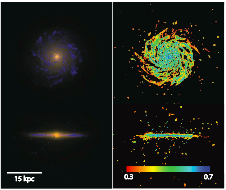 Simulated images (what you might observe with a telescope) of the Eris simulation's result.  Look how realistic this galaxy appears: just like typical pictures of the Milky Way.  From the Eris paper.