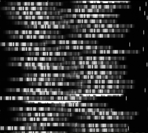 Example of multi-object spectroscopy. Each row in the images is a spectrum of a different object. Image Credit: Gemini
