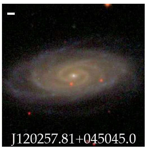 Bulgeless galaxies with growing black holes | astrobites