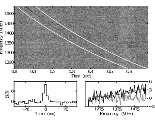 Arecibo Detects a Fast Radio Burst