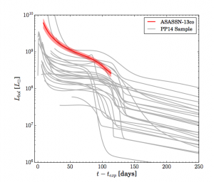 The bolometric (total flux over all wavelengths) light curve of ASASSN-13co in red plotted against the light curves of the supernovae used in making the PP14 model, in grey. The thickness of the red indicates the uncertainty in the light curve. We can see that ASASSN-13co is one of the most luminous supernovae and that unlike the other Type II-P SN shown, it does not have a long plateau phase.