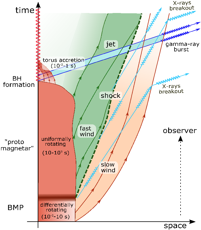 Spacetime diagram of the two-winds model.