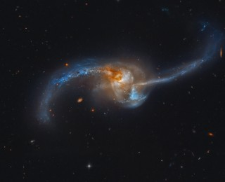 Black Holes Grow First in Mergers