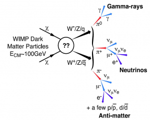 Fig. 2 - Dark matter particles probably don't produce photons on their own. However, if they interact via the weak nuclear force, they could create a particle-antiparticle pair when they collide. These byproducts can produce photons when they collide, resulting in observable traces of dark matter. From Baltz et al. 2008.