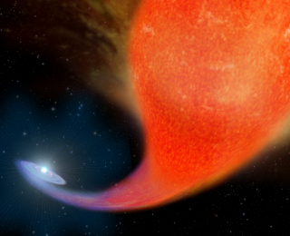 Pursuing eternal youth: stellar cannibalism in the wilds of our galaxy