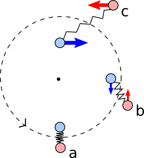 Figure 2: A schematic illustration of the magnetorotational instability. Two fluid elements are connected by a spring and due to this connection, the inner element transfers its angular momentum to the outer one causing the two moving apart from each other.