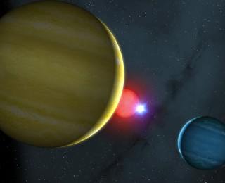 Weathering the storm or rising from the ashes? The circumbinary planets of NN Serpentis