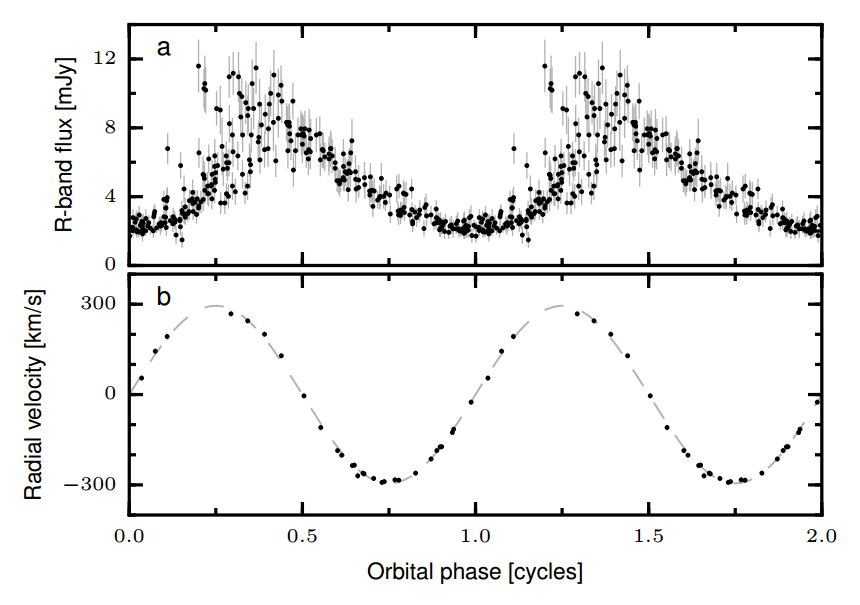 (a) AR Sco's light curve, taken over seven years and folded on the 3.56 h period. Note the scatter around maximum light. (b) Radial velocity of the M star, folded to the same period as the light curve. The star varies sinusoidally in velocity on the 3.56 h period. That shows it to be the orbital period of a close, circular orbit binary star.