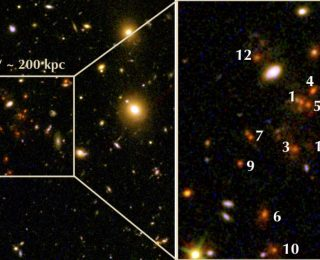 Baby Photos of a Galaxy Cluster