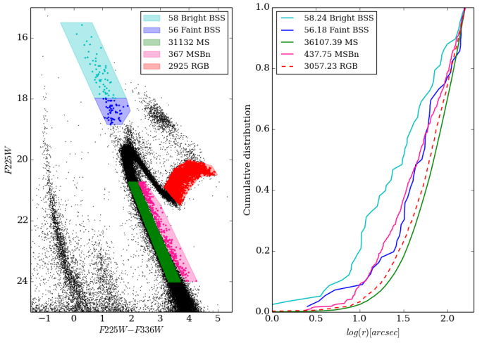 Figure 1: The left panel shows a colour magnitude diagram using Hubble's filters F255W and F336W. The stellar populations identified are indicated. On the right panel, the cumulative distribution for each population is shown. The numbers of stars in each panel are slightly different because a completeness correction was done on the right panel, taking into account stars that aren't detected because of limitations in the method.