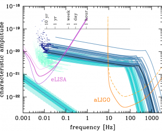 Observing across the gravitational wave spectrum