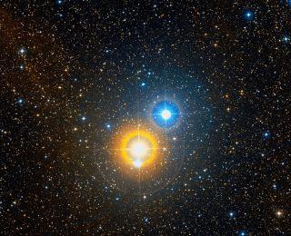 How many stars have companions?