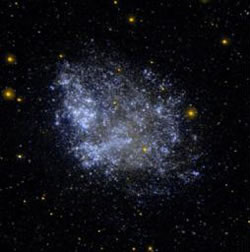 The Imprint of Cosmic Reionization on Dwarf Galaxies