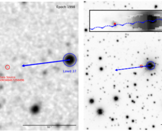 Measuring Masses with Microlensing: A White Dwarf Magnifying Glass