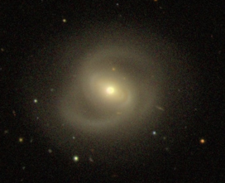 Plenty of Gas Left in Giant Dead Disk Galaxies