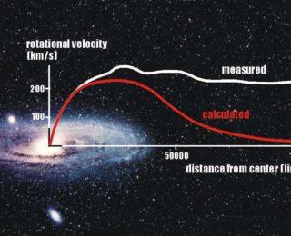 A Dizzying Diversity of Dwarf Galaxies