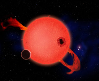 Combining Ground and Space-based Observations to Find EvryFlare