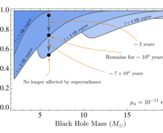 Bosons in the Sky with Black Holes