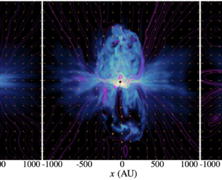 "The ""Turbulent"" Relationship between Stellar Feedback and Magnetic Fields"