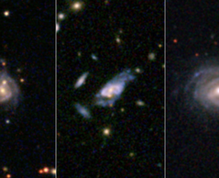 Make Our Galaxy Grow: Massive Disk Galaxies in the Local Universe