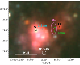 Discovering the building blocks of nuclear star clusters