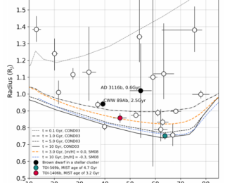 Transiting Brown Dwarfs from TESS