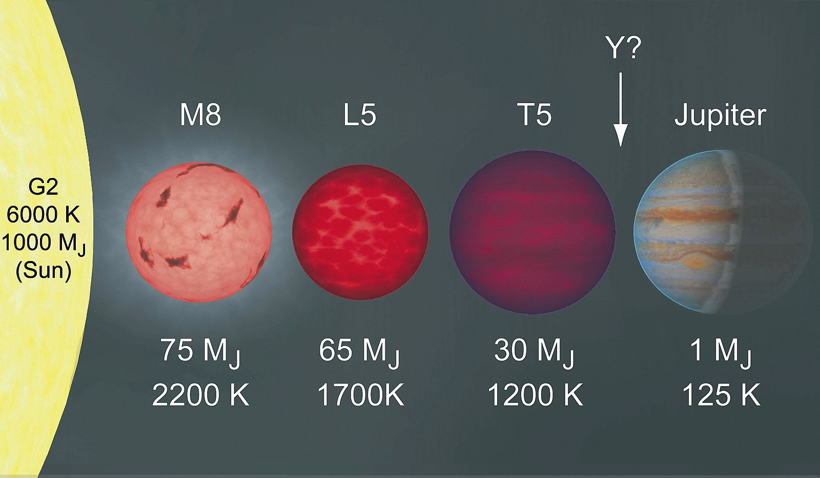"An image on five astronomical bodies in a row. From left to right: 1. A large yellow star with the caption ""G2, 6000 Kelvin, 1000 MJ, (Sun)."" 2. A light red star with the caption ""M8,  75 MJ, 2200 Kelvin."" 3. A red brown dwarf with the caption ""L5, 65 MJ, 1700 Kelvin."" 4. A purple brown dwarf with the caption ""T5, 30 MJ, 1200 K."" 5. A bluish-orange planet with the caption ""Jupiter, 1 MJ, 125 Kelvin."" There is an arrow pointing to the space between the purple brown dwarf and Jupiter with the caption ""Y?""."
