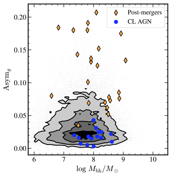 Galactic asymmetry against black hole central mass. The comparison galaxy sample is spread across stellar mass but concentrated at low asymmetry. Merging galaxies show quite a range of asymmetry values. In contrast, changing look AGN occupy a much narrower range of asymmetry values than the merging or comparison galaxies