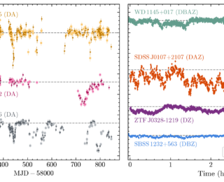UR: I Spy Transits and Pulsations – Empirical Variability in White Dwarfs Using Gaia and the Zwicky Transient Facility