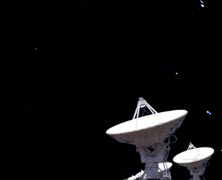 Hunting in total darkness: the search for dust-obscured galaxies at cosmic dawn