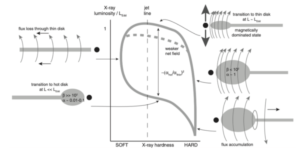 Illustration of proposed disk shape evolution and how this affects the X-ray luminosity and X-ray hardness