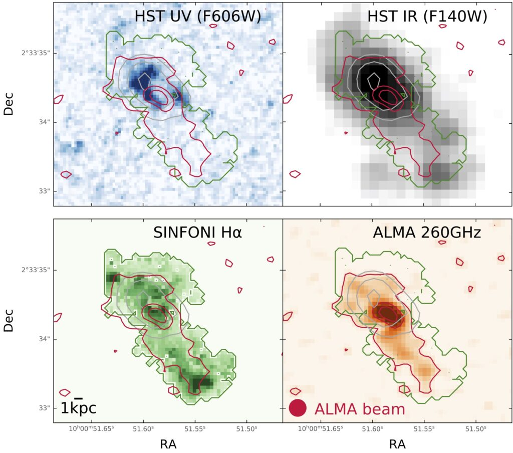 Four panel figure showing images of the galaxy in four different wavelengths. The images are highly resolved and detailed. Each shows similarly extended emission with slightly different shapes which demonstrates the spatial offset between obscured and unobscured star formation.