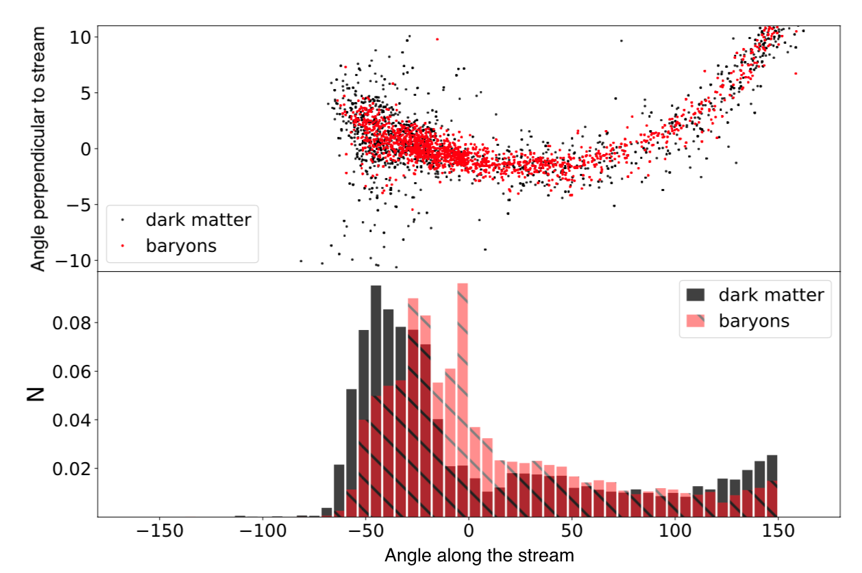 Top: Positions of particles in the simulated stellar stream, dark matter in red and baryons in black. Bottom: Histogram of particle density along the stream. The dark matter and baryons have similar density distributions, while the main difference is the baryonic core at angle ~0 along the stream.